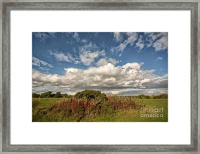 Richmond Racecourse Framed Print