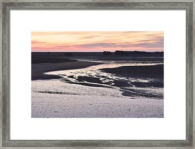 Dusky Wetland Framed Print