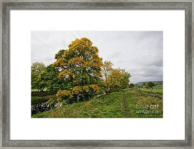 River Swale Framed Print
