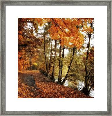 River Views Framed Print