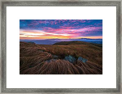 Roan Mountain Sunrise Framed Print