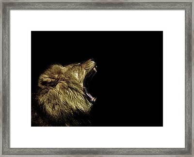 Roar Framed Print by Martin Newman