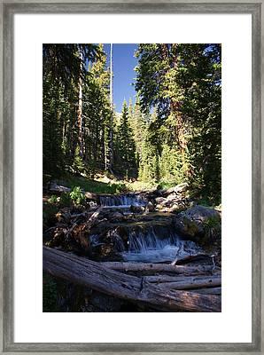 Rocky Mountain Summer Framed Print