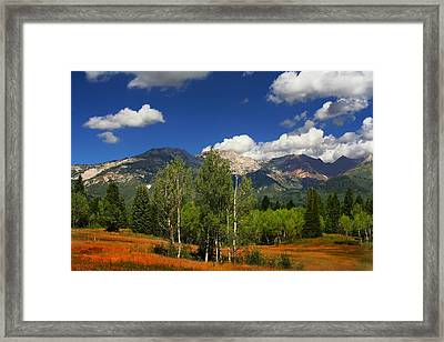 Rocky Mountains Framed Print by Mark Smith