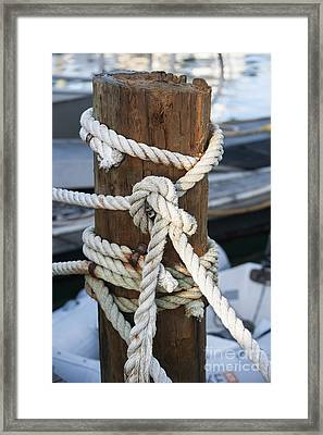 Rope Fence Fragment Framed Print by Elena Elisseeva