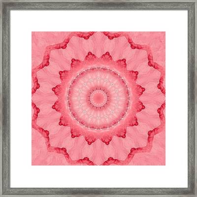 Framed Print featuring the digital art Rose by Elizabeth Lock