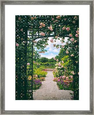 Rose Pergola Framed Print by Jessica Jenney