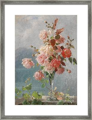 Roses Framed Print by Celestial Images