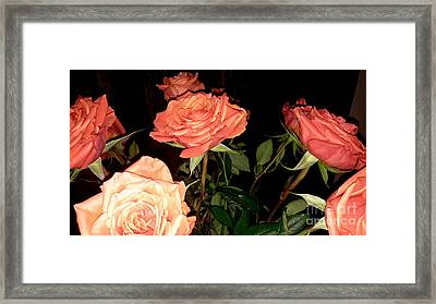 Roses For Holiday Framed Print