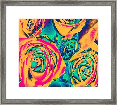 Roses - Pop Art Framed Print by Marianna Mills