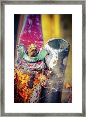 Rusted Out Framed Print by Terry Davis