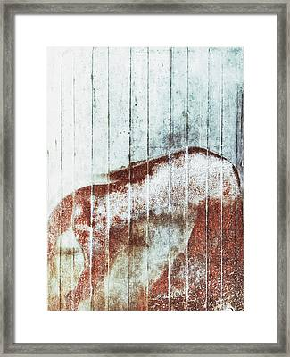 Rusty Metal Background  Framed Print by Tom Gowanlock