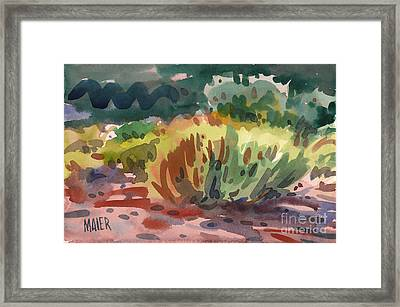 Sagebrush Framed Print by Donald Maier