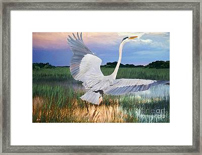 Sail Into Sunset Framed Print