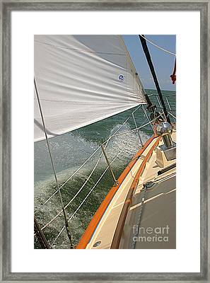 Sailboat Framed Print