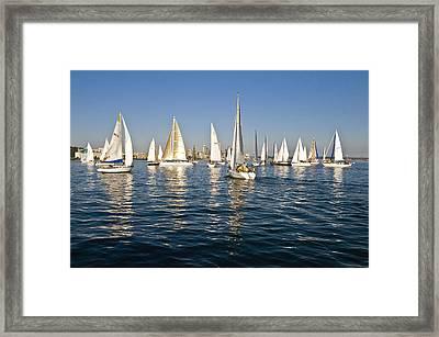 Sailboat Race Framed Print by Tom Dowd