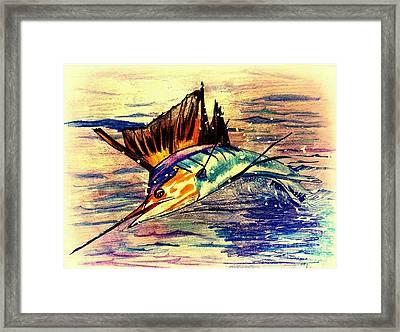 Sailfish Saltwater Fishing Framed Print