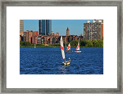 Sailing The Charles River Boston Ma Framed Print