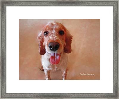 Saint Shaggy Art Photograph 3 Framed Print