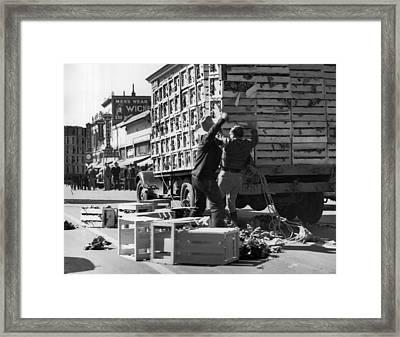 Salinas Lettuce Strike Battles Framed Print by Underwood Archives