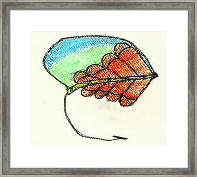 Salmon Fly Framed Print by Johnny Duty