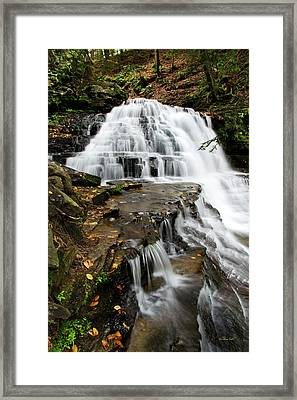 Framed Print featuring the photograph Salt Springs Waterfall by Christina Rollo