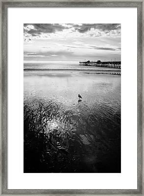 San Clemente Pier Framed Print by G Wigler