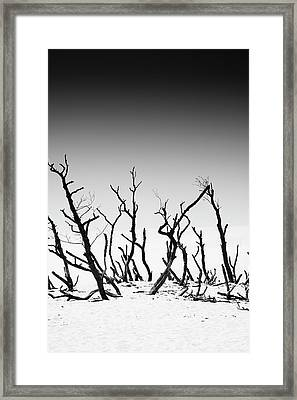 Framed Print featuring the photograph Sand Dune With Dead Trees by Chevy Fleet