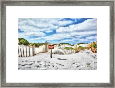 Framed Print featuring the photograph Sand Dunes At Grayton Beach # 4 by Mel Steinhauer