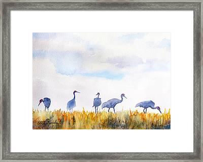 Sandhill Skyline Framed Print