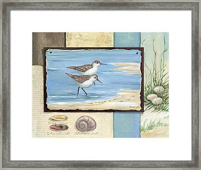 Sandpiper Collage I Framed Print by Paul Brent