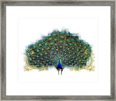 Scroll Swirl Art Deco Nouveau Peacock W Tail Feathers Spread Framed Print by Audrey Jeanne Roberts