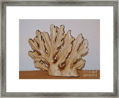 Sea Fan Framed Print