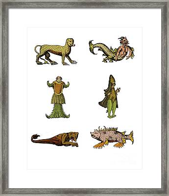 Sea Monsters Framed Print