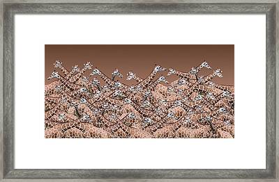 Sea Of Giraffes Framed Print