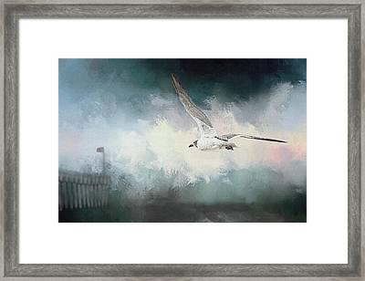 Seagull In Flight Framed Print by Sennie Pierson