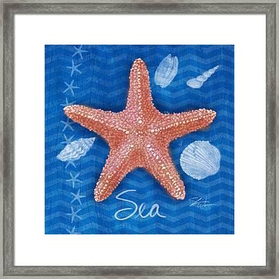Seashells On Blue-sea Framed Print