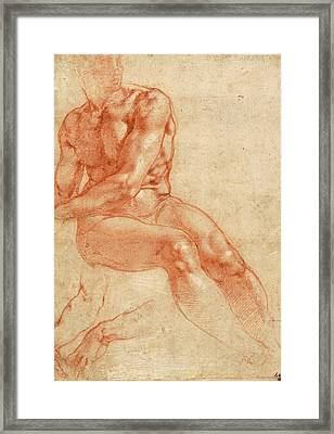 Seated Young Male Nude And Two Arm Studies Framed Print by Michelangelo Buonarroti