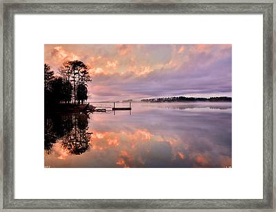 Double Vision Framed Print by Lisa Wooten