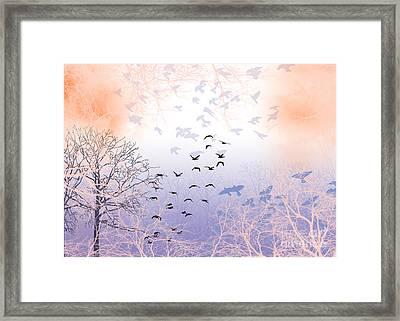 Seekers Framed Print