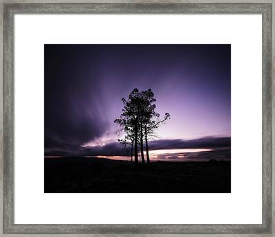 Framed Print featuring the photograph Sentinels by Antonio Jorge Nunes