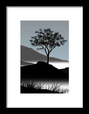 Single Tree Framed Prints