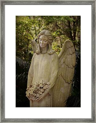 Serenity Framed Print by Carla Parris