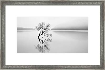 Serenity Framed Print by Neville Jones