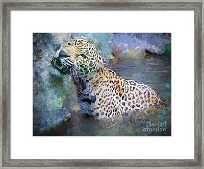 Seven Year Itch Framed Print by Judy Kay