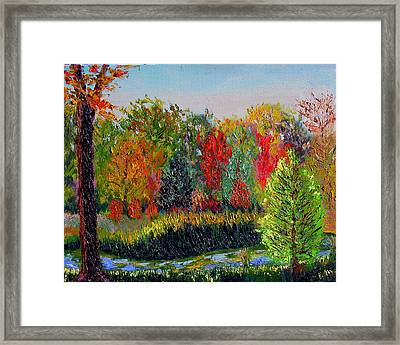 Sewp 10 10 Framed Print by Stan Hamilton