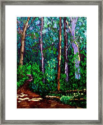 Sewp 6 15 Framed Print by Stan Hamilton