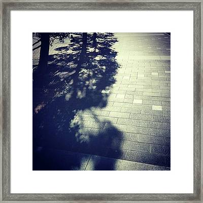 #shadow #光と影 Framed Print by Bow Sanpo