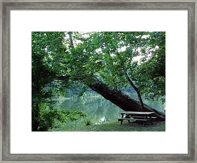 Shenandoah Picnic Framed Print