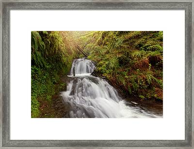 Shepperd's Dell Falls Framed Print by David Gn